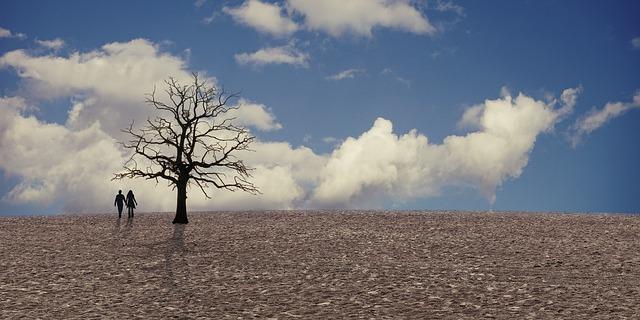 campo con sequía por el cambio climático